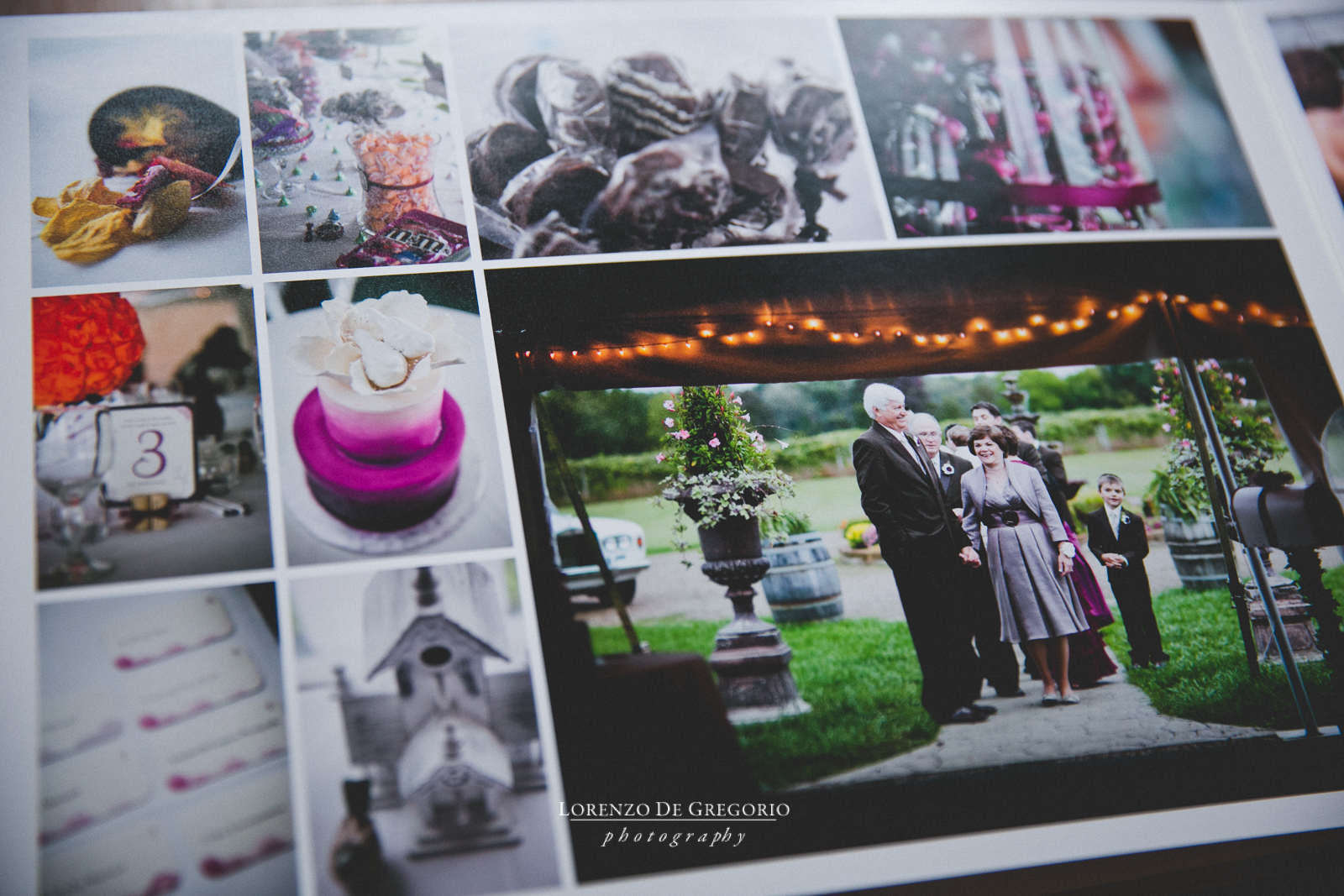 Michigan Queensberry album vineyard wedding